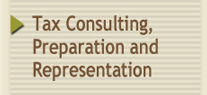 Tax Consulting, Preparation and Representation